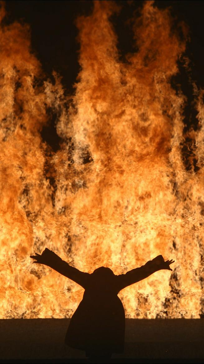Bill Viola, Fire Woman 2005