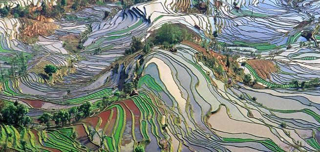 https://www.doppiozero.com/sites/default/files/imagecache/rub-art-preview/terrace_field_yunnan_china_denoised_0.jpg