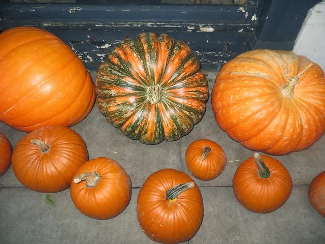 Perche La Zucca A Halloween.Halloween Morti E Zucche Doppiozero